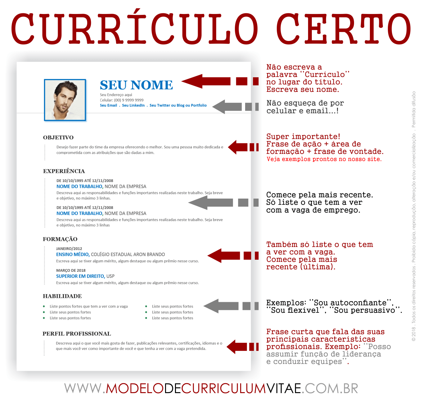curriculum modelo - Yolar.cinetonic.co
